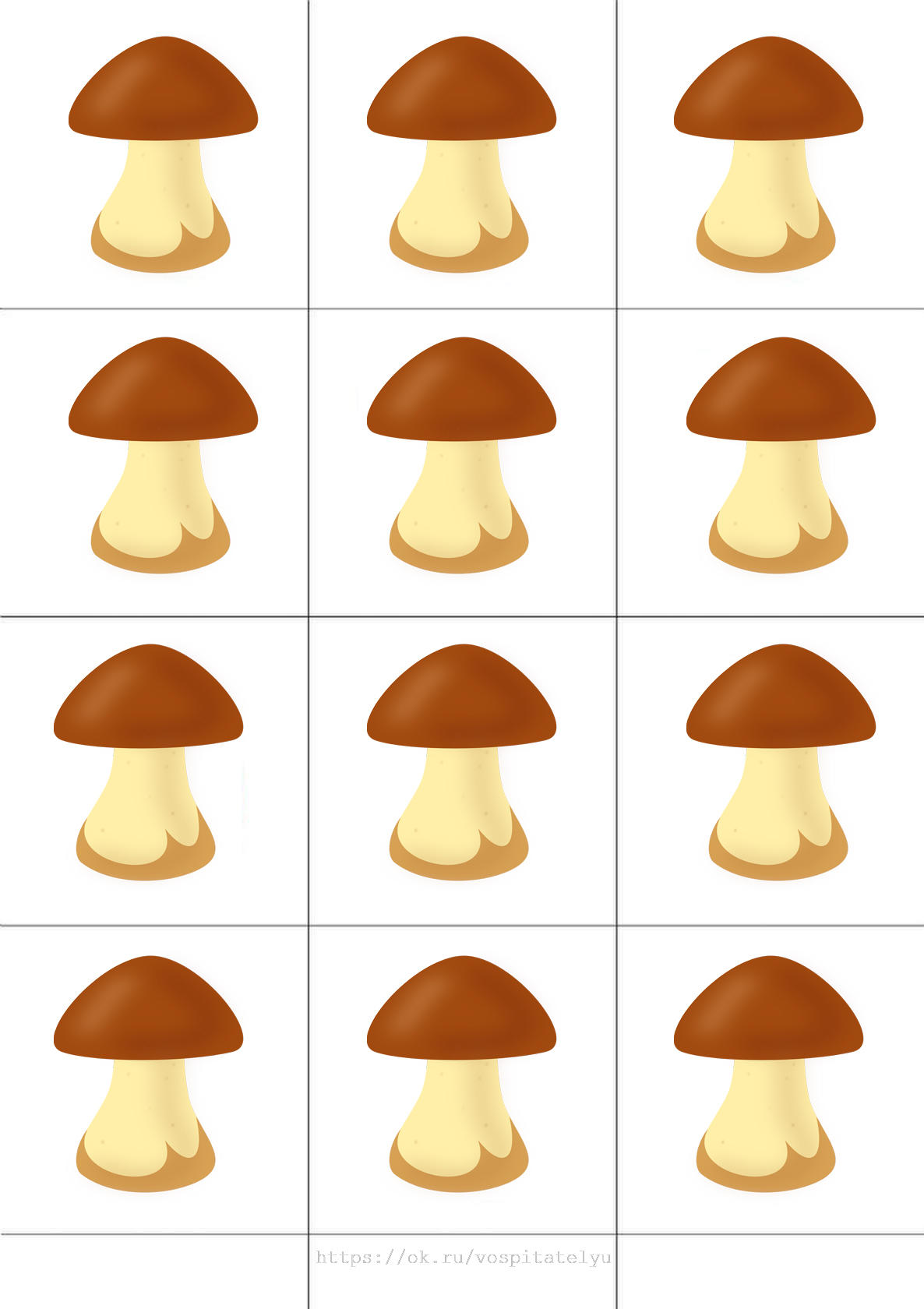 грибы картинки счетный материал салатов