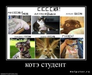 Шипуново инфо ru Любовь Бугрова Дипломные работы