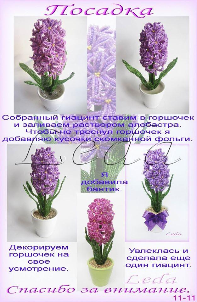 Весенние первоцветы Image?id=862335016146&t=3&plc=WEB&tkn=*ptMR0osxh_dqLrthwqd_MboG6m8