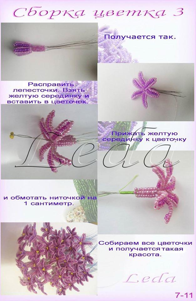 Весенние первоцветы Image?id=862335018706&t=3&plc=WEB&tkn=*4IZQQBGVG-ZHiv-hCULHd25rRlg