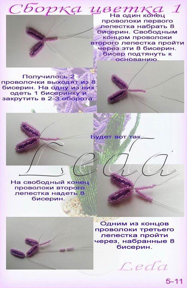 Весенние первоцветы Image?id=862335019218&t=3&plc=WEB&tkn=*rAyeNS4NRz6qxz0J-ltLwzsdd7c