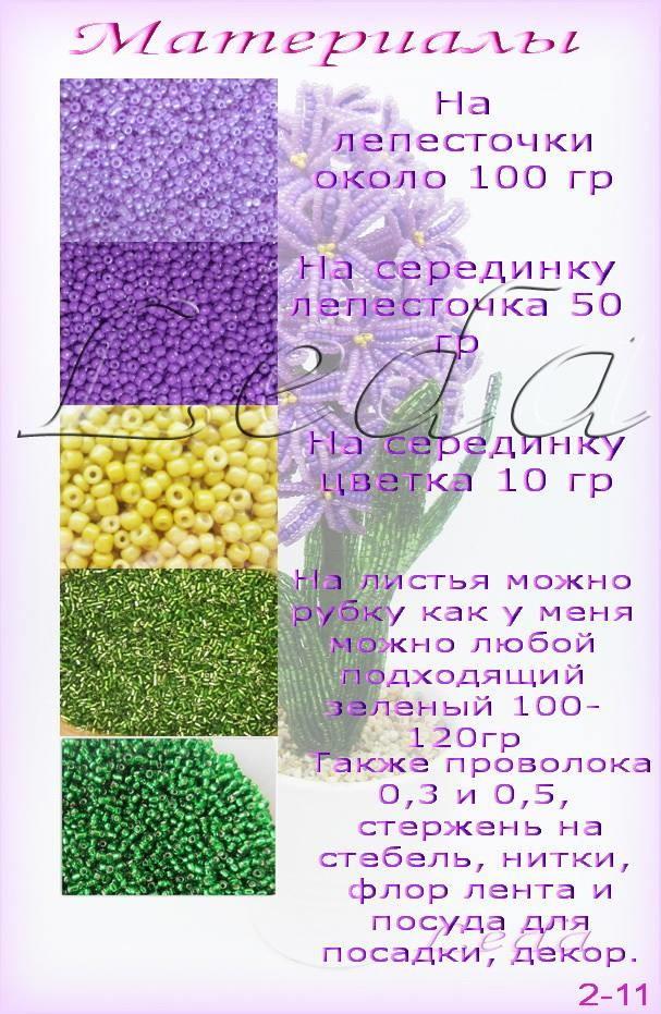 Весенние первоцветы Image?id=862335021778&t=3&plc=WEB&tkn=*Rd0KMnXrhDMmxc6j9dzrj1J3zN4