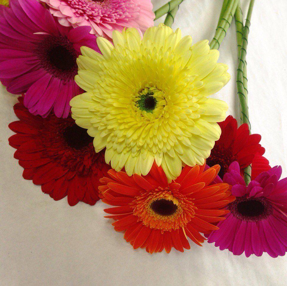 Севастополь доставка цветов круглосуточно, самый лучший букет для любимой