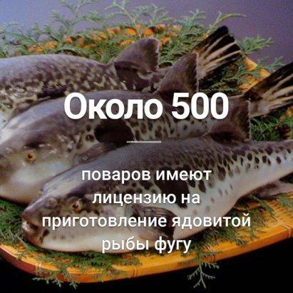 Заказать реферат курсовую диплом в Тольятти ru А Вы знали