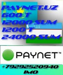 paynet чек программа