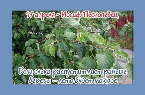image?id=867587151374&t=0&plc=WEB&tkn=*8