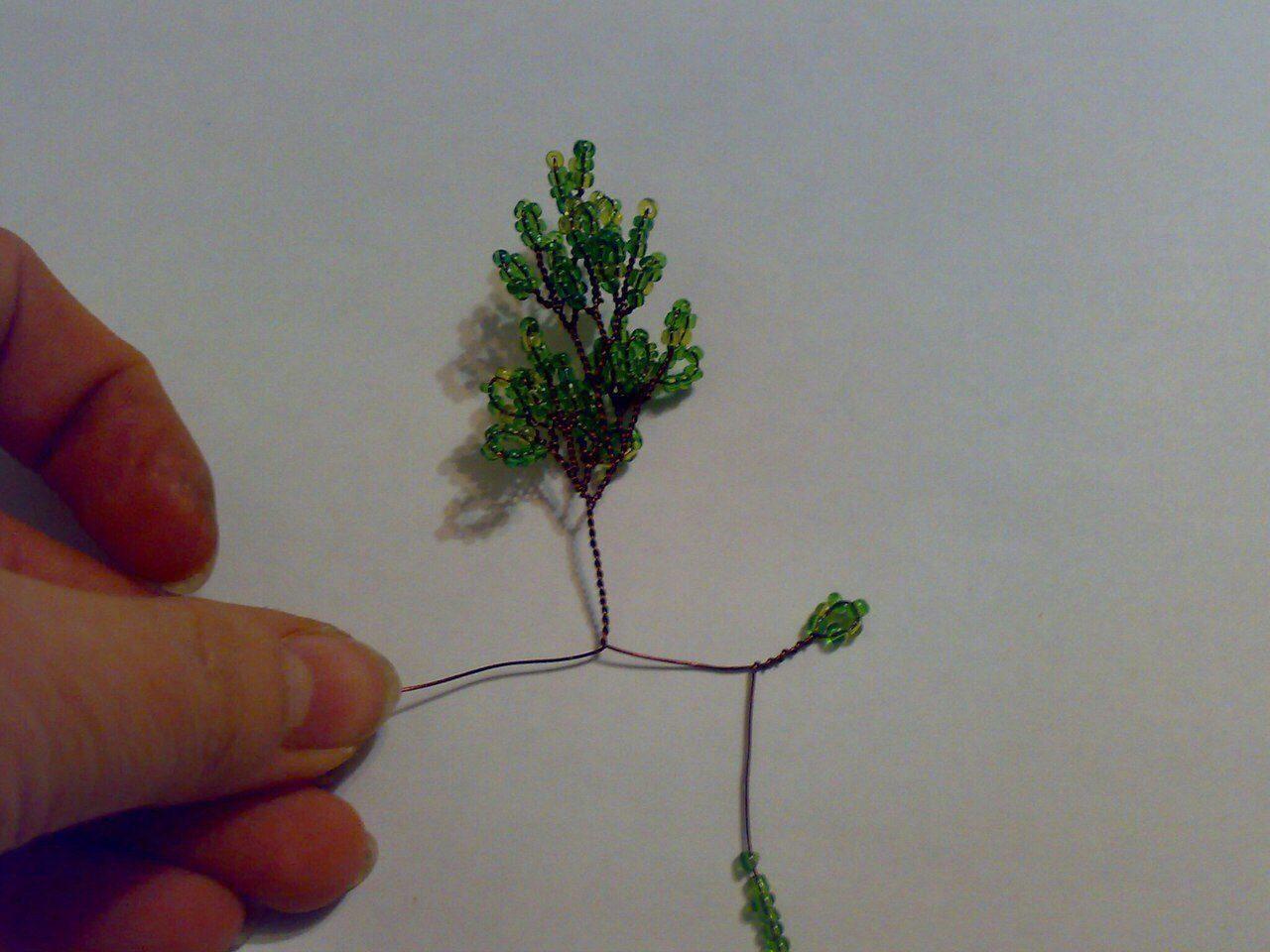 Деревья Image?id=867746748003&t=3&plc=WEB&tkn=*riyo9_wOn-xVsVoqa__36i60nJE