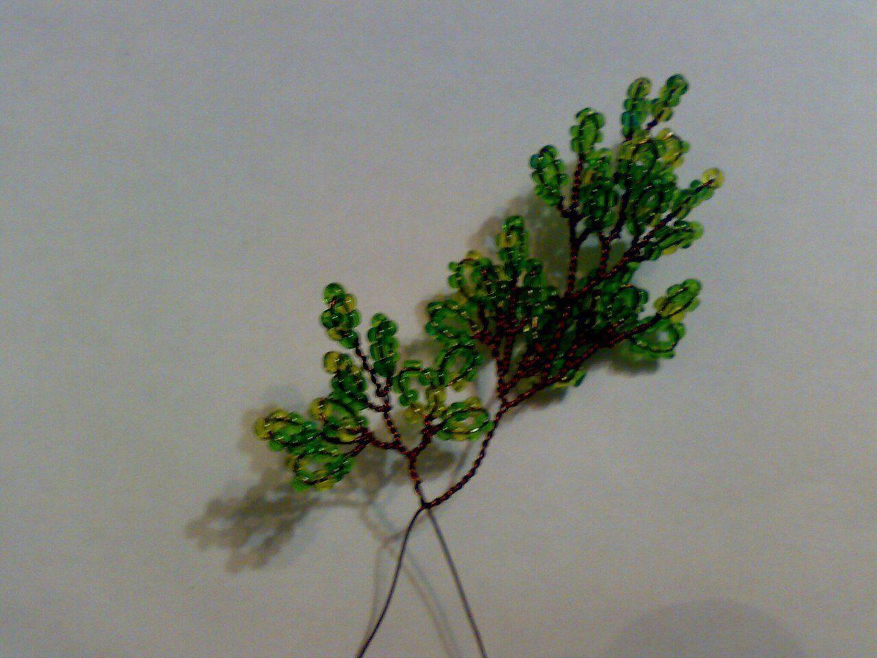 Деревья Image?id=867746748515&t=3&plc=WEB&tkn=*FULoJW-eHqEhpb4t-PesrXavIAQ