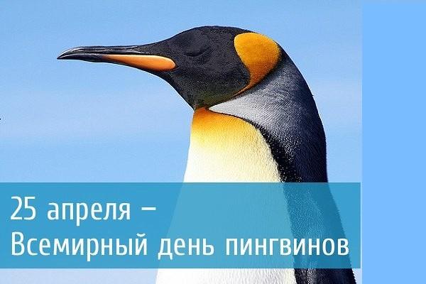 image?id=867749545742&t=0&plc=WEB&tkn=*s