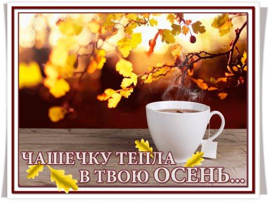 Открытка, открытки чашечка тепла для твоего осень