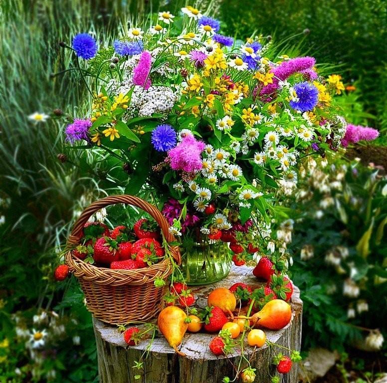 картинки с июльскими цветами подписи фотографии гуф