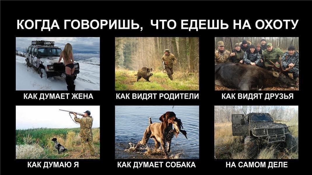 это смешные картинки про охоту и охотников итог продажи авалон