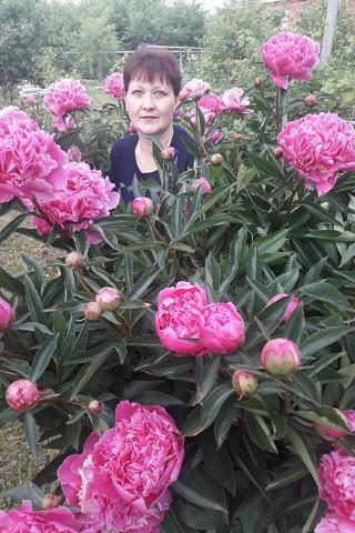 Galina, 45, Stupino