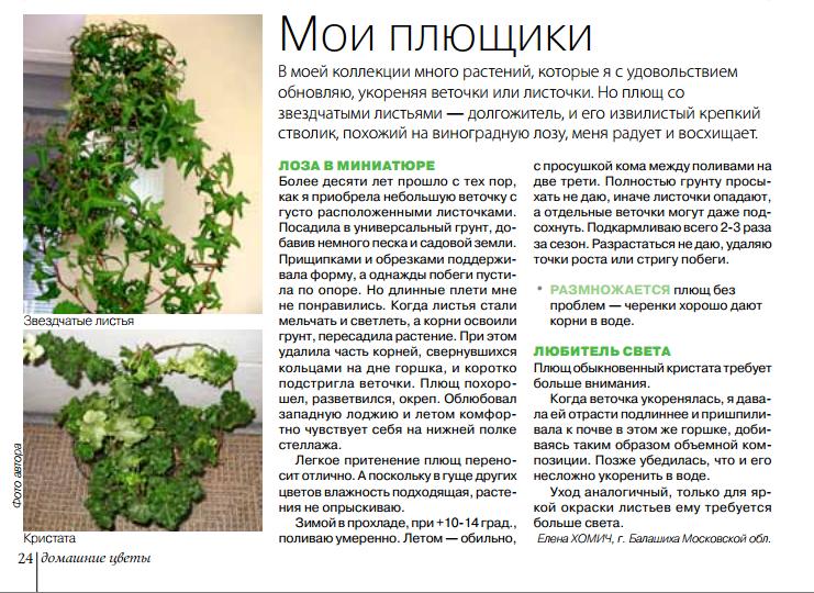 статьи о растениях из  газет и журналов - Страница 8 Image?id=873876991772&t=3&plc=WEB&tkn=*YoRyWFVcfVfJEWu3JQ5kkkbc8Yw