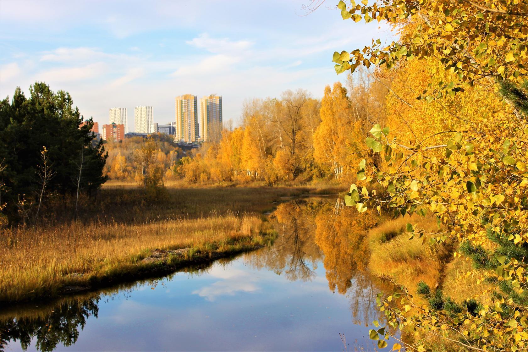 фото красноярск осень год годом изучаем