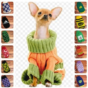 вязаная одежда для собак юлия Okru