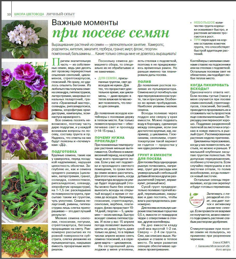 статьи о растениях из  газет и журналов - Страница 8 Image?id=875873106120&t=3&plc=WEB&tkn=*h_OuwNppIu7hmFUBX6O2q5lOUD0