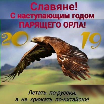 Год Парящего Орла
