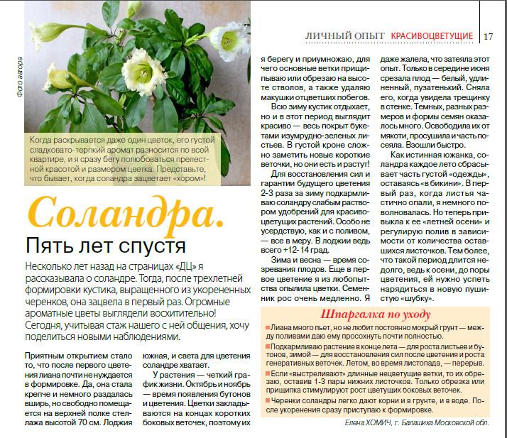 статьи о растениях из  газет и журналов - Страница 8 Image?id=878831832776&t=3&plc=WEB&tkn=*vaNu9o5i8G0vkeDvvDrCdrb-o40