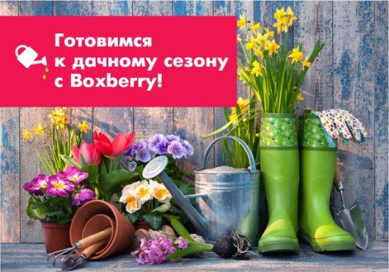 169c36118 Правило № 1: начинайте с малого Лучше закончить небольшую цветочную  полянку, чем бессмысленно рассаживать растения по всему участку.