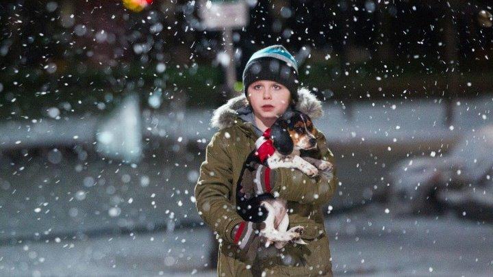 В канун Рождества One Christmas Eve (2014). Семейный фильм