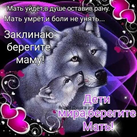 Бек, 40, Astrakhan