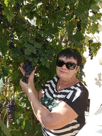 Svetlana, 66, Moscow