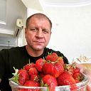 Если за лето съесть килограммов 5 клубники — организм очистится, а состав крови обновится. #Емельяненко #АЕ #Россия #спорт #самбо #бокс #mma