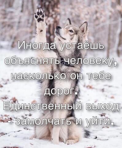 Александр, 40, Belaya Rechka