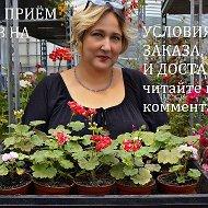 Лавка Садовода Наталия