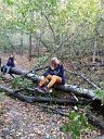 Хорошо в лесу осенью)))