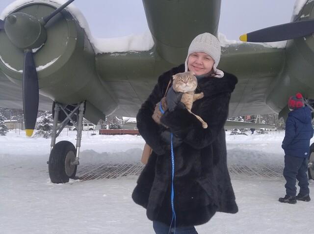 Александр, 45, Volosovo