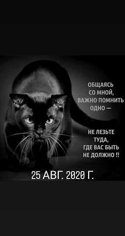 Виктор, 37, Kyzyl-Orda