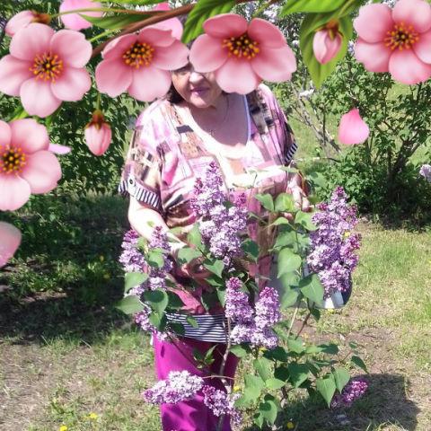 Ирина, 59, Novokuybyshevsk
