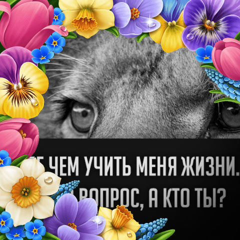 Юлия, 30, Sibirskiy