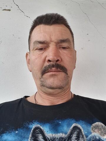 Виктор, 48, Asino