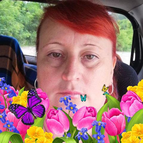 Галина, 50, Novosibirsk