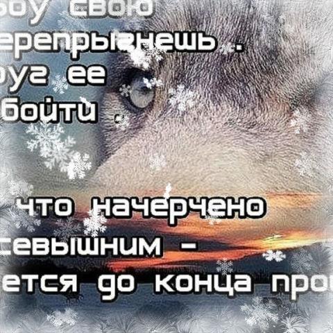 Сергей, 45, Ventsy