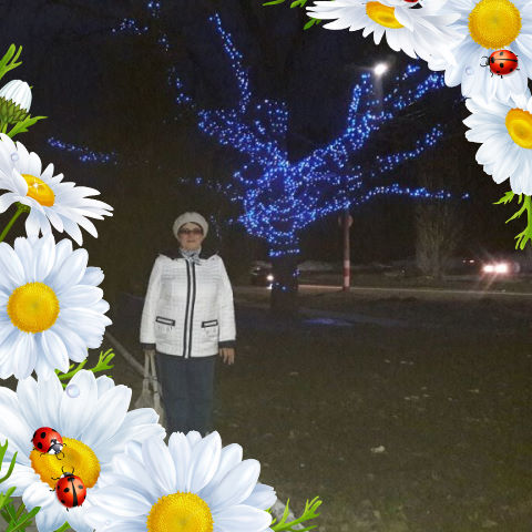 Galina, 65, Dimitrovgrad