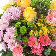 Софья Магазин цветов