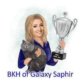 Cattery of Galaxy Saphir