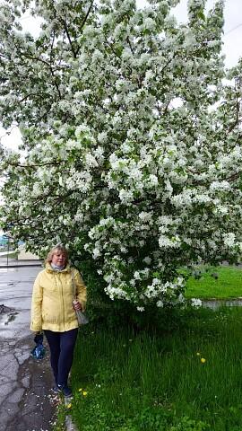 Lyudmila, 57, Biysk