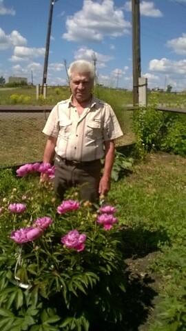 Valeriy, 64, Artemovskiy