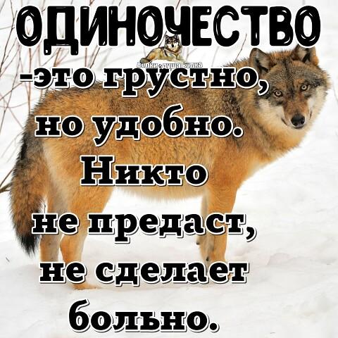 Галинка, 46, Novokuznetsk