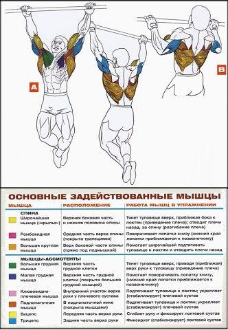 Расул, 43, Murmansk
