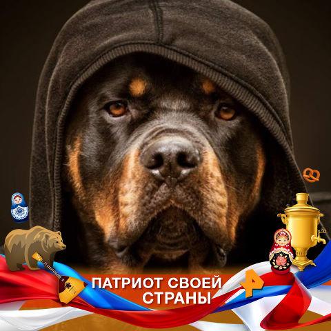 Mitya, 34, Lipetsk