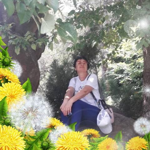 Ольга, 56, Майкоп, Адыгея, Россия