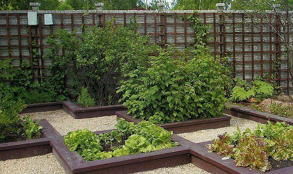 Стильная планировка огорода