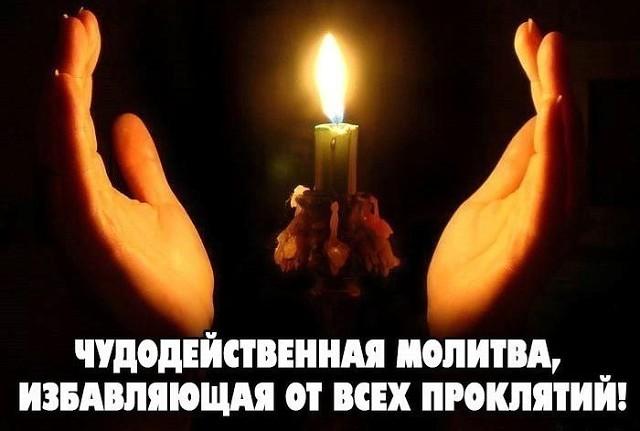 molot-tora-kupit-v-apteke-v-ufe-tsena