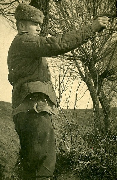 Картинки по запросу пистолет тт 1930